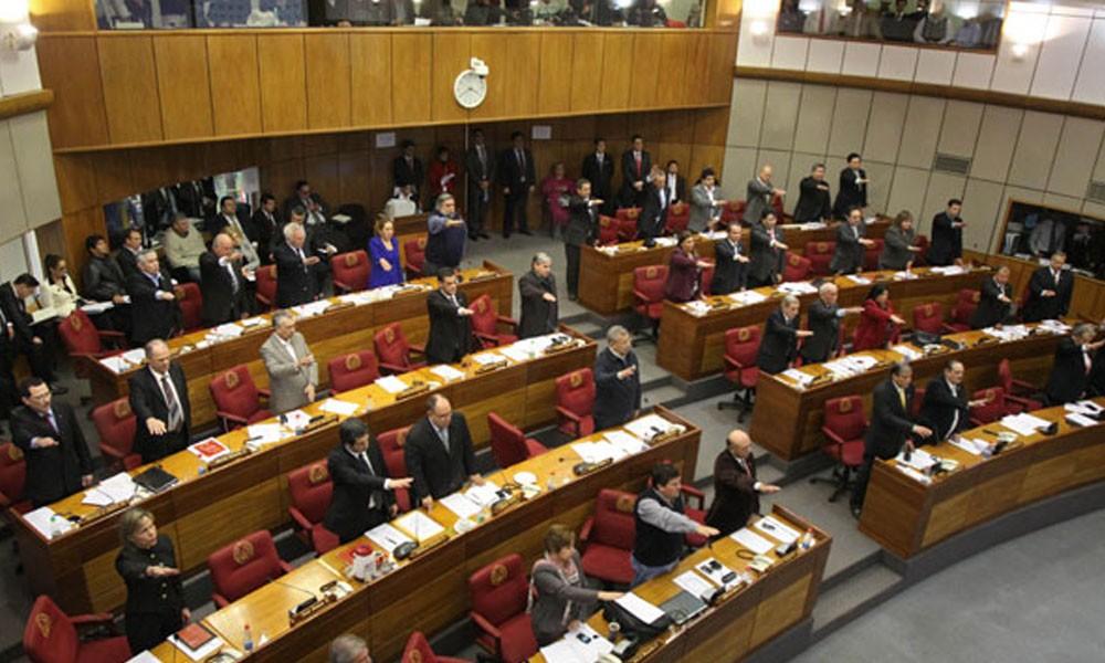 Senado rechaza proyecto de enmienda para reelecci n for La camara de senadores