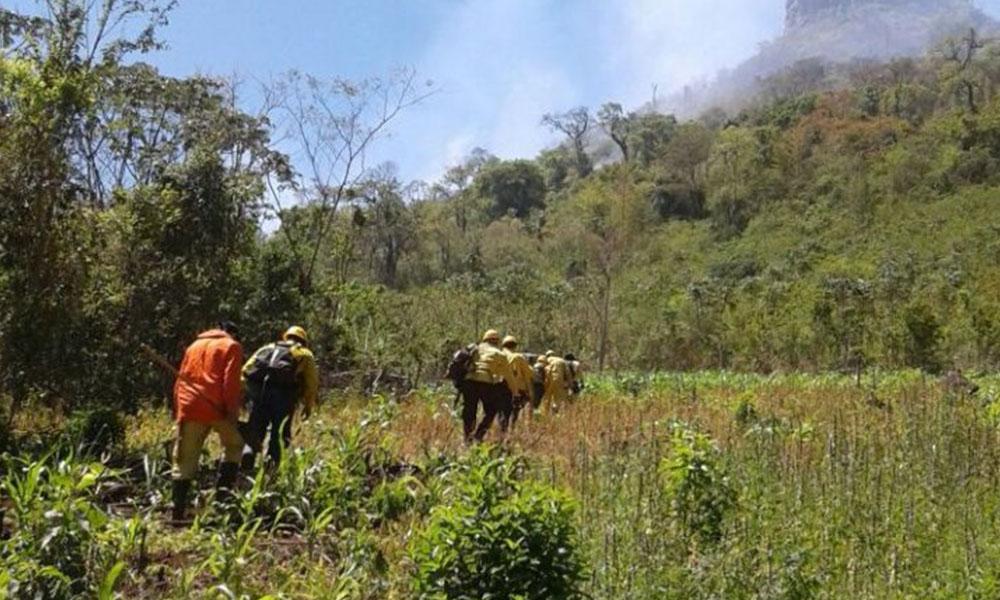 Controlan fuego en la zona del Cerro Akatí