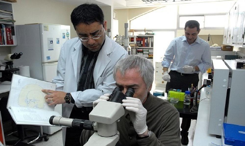 Científicos descubren inmunoterapia que frena el avance del cáncer