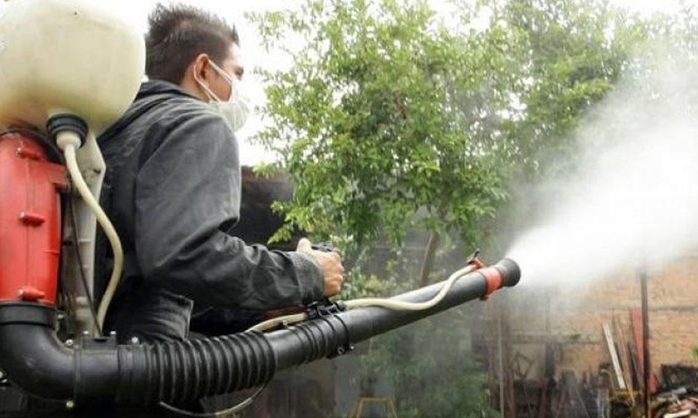 Salud confirma 255 casos de dengue y una persona fallecida