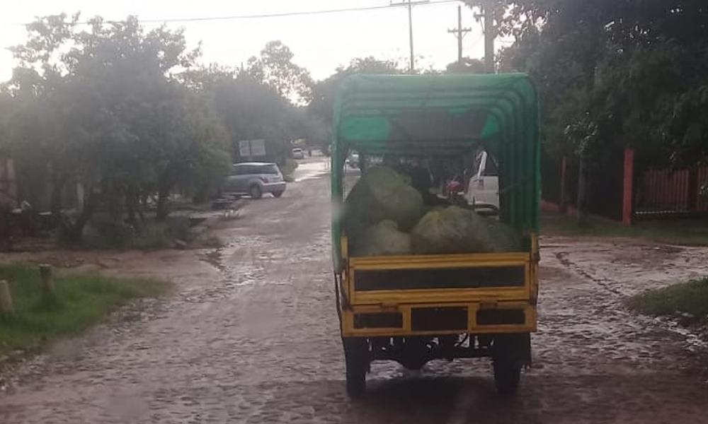 Recolectores informales cargan vertederos clandestinos